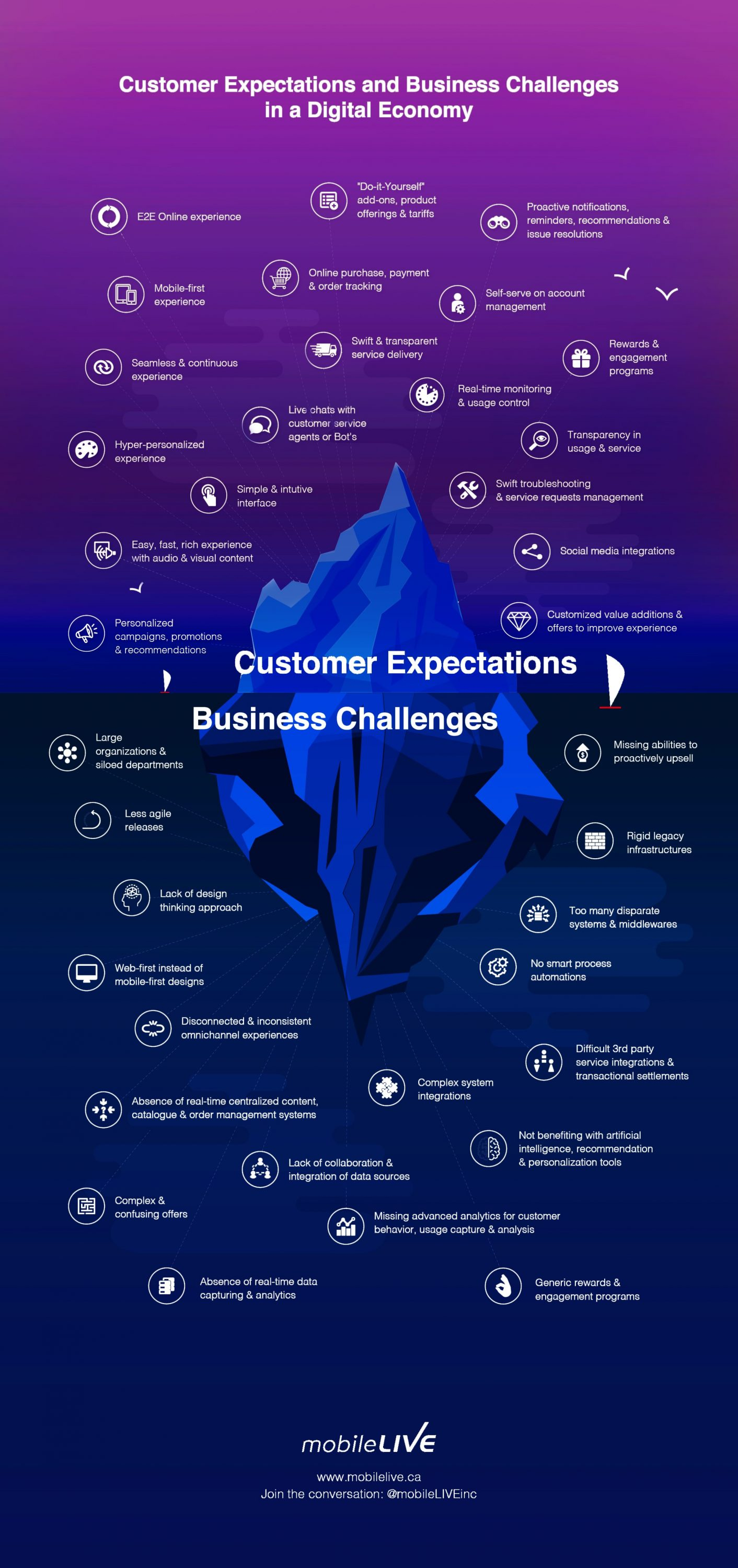 Customer Expectations & Business Challenges in a Digital Economy is a graphical representation that depicts the unique Customer Expectations and the associated Business Challenges faced in trying to meet them.